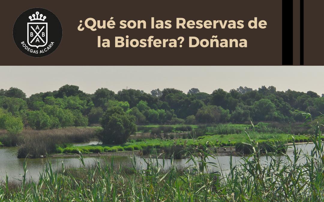 ¿Qué son las Reservas de la Biosfera? Doñana